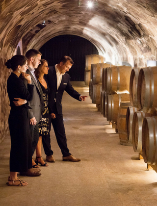 Guided tour in the cellars